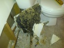 Mold-in-Bathroom-wall20110620-