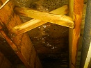 Mold-on-joists-20100206